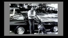 William Shatner and friend with a 1963 Corvette Sting Ray Sport Coupe – AnythingEverything Star Trek 1966, William Shatner, Scene Image, Big Star, Vintage Colors, Doberman, Corvette, Behind The Scenes, Stars