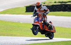 Vespa, Racing, Motorcycle, Vehicles, Wasp, Running, Hornet, Auto Racing, Vespas