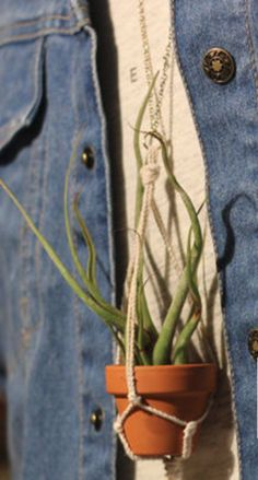 I can't get over how cute this Tiny Air Plant Macrame Necklace is. Seriously.