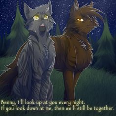 The brown cat is brambleclaw, and the other cat to the left is Frankie. Thunderclan took care about Benny and Frankie. Benny dies, but Frankie gets his warrior name stormcloud. Warrior Cats Quotes, Warrior Cats Series, Warrior Cats Books, Warrior Cats Fan Art, Cat Quotes, Spirit Drawing, Warrior Names, Love Warriors, Spirited Art