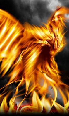 phoenix?  meaning soul of fire nothing can contain it will die fighting protecting its itself and family!  much respect!  thats my department!  am a double head eagel and firebird!  goodnight!