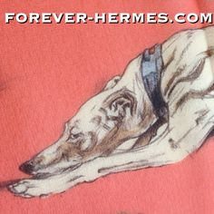 Love #dogs ? In our store now http://forever-hermes.com #ForeverHermes is this incredibly stunning and very rare Hermes Paris #chiffon #muslin #silk #scarf designed by Xavier De Poret titled Levriers that features adorable greyhound #dog #drawing #dogsofinstagram #dogoftheday for #dapper #gentleman #WallDecor #MenStyle #MensSuit #MensWear #MensWear #doglover #WomensWear #womensfashion #hermescarre #HermesParis #hermescollector