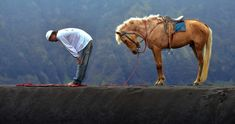 a man praying and his horse is doing the same behind him . this is islam even the animals are praying and low his head for God Amazing Photography, Art Photography, Man Praying, Moslem, Muslim Men, Muslim Pray, Les Religions, Islamic Pictures, Selfie
