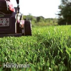 Easy Lawn Care Tips. Get a greener, healthier lawn with less effort by following these simple lawn care tips. We'll show you how to establish easy-mow borders and walks, use crabgrass preventers, set your mower to the proper cutting height and more