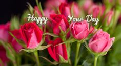 Happy your day Charlotte Rose, Carnations, Pink Roses, Day, Flowers, Cushion, Wallpapers, Cushions, Wallpaper