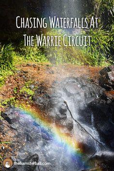 Waterfalls | Warrie Circuit | Springbrook | Gold Coast | Queensland | Travel | Travel Blog | Travel Blogger | Hike | Trek | Adventure | Explore | Experience |