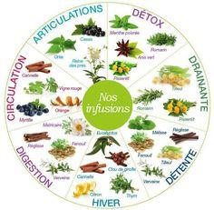 Des plantes utiles à la santé - Bien être, santé, relaxation, massage, stress, shiatsu, Qi Qong; phytothérapie, remède de grand-mère