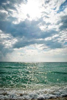 Gulf Coast, Venice Beach, FL