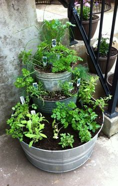 Balkon ideen 2019 I have always wanted an Herb Garden. I think I might try this with some other Balkon ideen 2019 - I have always wanted an Herb Garden. I think I might try this with some other Ba Balcony Herb Gardens, Small Gardens, Outdoor Gardens, Terrace Garden, Balcony Plants, Garden Hedges, Balcony Gardening, Outdoor Pots, Pot Plants
