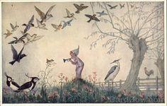 Dawn Chorus by Molly Brett Dressed Animals (Cardcow, 2013)