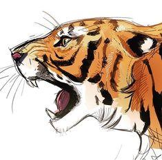 Pin by bliharzh elizabeth on (э) тигр in 2019 big cats art, Big Cats Art, Furry Art, Cat Art, Animal Sketches, Animal Drawings, Art Sketches, Cool Art Drawings, Cool Artwork, Tiger Art