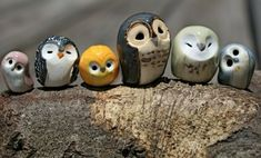 Araminta the Polymer Clay Owl, Harry Potter Inspired Owlery smol owl birb by calicoowls from Tampa, FL, USA Clay Birds, Ceramic Birds, Ceramic Animals, Ceramic Pottery, Ceramic Art, Polymer Clay Creations, Polymer Clay Crafts, Diy Clay, Sculptures Céramiques