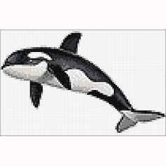 Killer Whale Glass Mural 4.8'x7.5'  -- pool