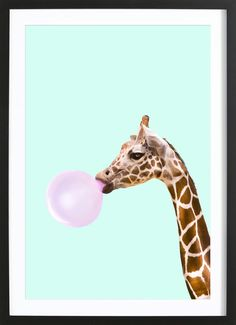 Giraffe als Poster im Holzrahmen von Paul Fuentes | JUNIQE