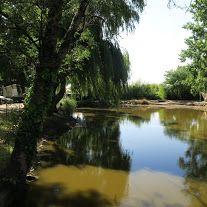Camping Le Parc de la Grève ****–Photos de l'établissement Camping, Photos, Park, Campsite, Pictures, Campers, Tent Camping, Rv Camping