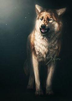 Art by Safiru Wolf Hybrid, Anime Wolf Drawing, Saarloos, Angry Wolf, Wolf World, Wolf Artwork, Fantasy Wolf, Wolf Wallpaper, Wolf Love