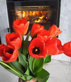 fireplace love <3 tradycyjny kominek na drewno Rose, Flowers, Plants, Design, Pink, Plant, Roses, Royal Icing Flowers