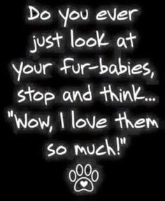 Love my fur-babies!!