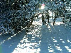 winter in wales