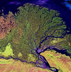 Satellite image of the Lena river delta, one of the largest rivers in the world. The Lena Delta Reserve is the most extensive protected wilderness area in Russia. It is an important refuge and breeding grounds for many species of Siberian wildlife. Earth And Space, Satellite Photos Of Earth, Earth Photos, Photo Voyage, Patterns In Nature, Birds Eye View, Aerial Photography, Earth Day, Aerial View