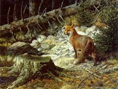 Carl Brenders - On the Alert - Red Fox - Search Gallery One for Brenders limited edition prints, giclee canvases and original paintings by internationally-known artists Wildlife Paintings, Wildlife Art, Animal Paintings, Wild Life, Fox Print, Red Fox, Pet Birds, Animals And Pets, Original Paintings