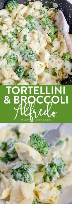 Tortellini & Broccoli Alfredo comes together in just 15 minutes - It's great option when you need to get dinner on the table in a hurry. Cheese Tortellini Recipes, Tortellini Alfredo, Broccoli Alfredo, Pasta Recipes, Dinner Recipes, Cooking Recipes, Broccoli Recipes, Egg Recipes, Kitchen