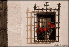 abriendo-puertas:      Ventana en la Calle de Cruz de Quirós. Albaicin, Granada. España