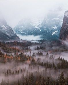 Fog Blanket over Yosemite National Park California.  (Photo by @abbihearne)