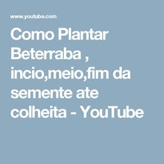 Como Plantar Beterraba , incio,meio,fim da semente ate colheita - YouTube