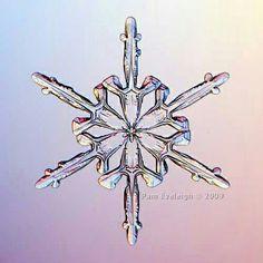 Copo de nieve, tan perfecto que parece hecho por la mano humana