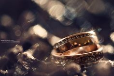 Rings by HorvathTamas on Wedding Rings, Engagement Rings, Jewelry, Enagement Rings, Jewlery, Jewerly, Schmuck, Jewels, Jewelery