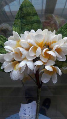 İpek kozasından full çiçeği