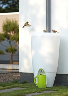 A contemporary water butt is a must for a small urban garden - simply choose one that you won't have to hide away!