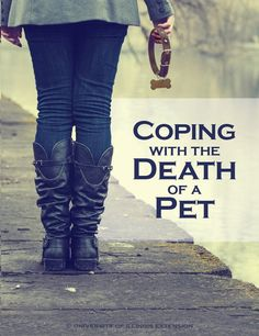 Coping with the Death of a Pet - helpful resource for grieving pet owners.