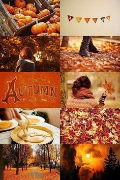 Fall Aesthetic I love summer but right now I'm getting a lot of autumn vibes