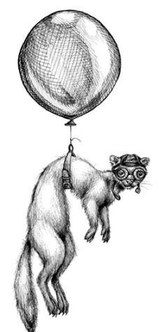 Ferret Balloon