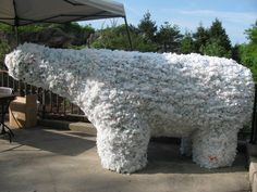 Polar bear made from plastic bags by keepers at the North Carolina Zoo to teach importance of recycling.