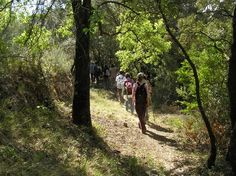 Walking along ancient trails in the Brugent river Valley, in Muntanyes de Prades, southern Catalonia