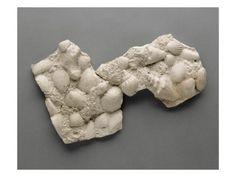 Plaque rectangulaire, pièce à décor de rocaille recouverte de mousse et de coquillages par BERNARD PALISSY - Musée national de la Renaissance (Ecouen)