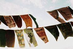 Ganbaroo loves these scarfs