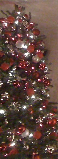 Red and sliver tree 2011