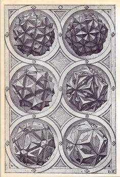 Perspectiva Corporum Regularium – Perspective of regular solids, Tetrahedron, Octahedron, Hexahedron, Icosaedron & Dodecahedron Geometry Art, Sacred Geometry, Solid Geometry, Geometric Drawing, Geometric Shapes, Geometric Painting, Gravure Illustration, Illustration Art, Platonic Solid