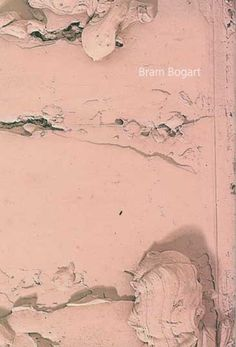 Bram Bogart Text by Sam Cornish 2011