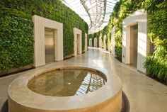 """Longwood Garden's """"Green Wall""""... there's got to be a way to bring this down to home-sized..."""