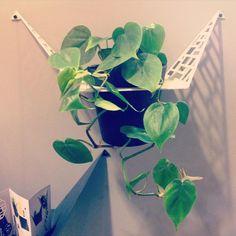 by dyb #bydyb (@bydyb) • Instagram-billeder og -videoer bydyb - Formland is now over and it have been some great days - Thank you all for visiting and all the interest in @bydyb #bydyb #boliginteriør #boligindretning #design #danskdesign #danishdesign #nordicbuzz #formland #plants #planter #planthanger #planteophæng #patterns #mønstre @formland_official @nordic_buzz