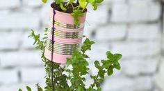 Der kleine vertikale Kräutergarten - superpraktisch für kleine Balkons. Die Anleitung findet ihr auf mamastolz.de