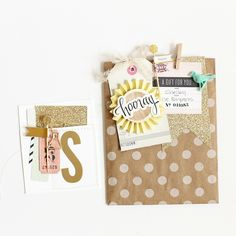 cute decorative polka dot gift bags and card tutorial from Stephanie Bryan using Maggie Holmes Confetti collection