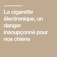 La cigarette électronique, un danger insoupçonné pour nos chiens