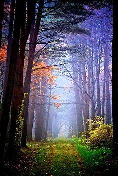A Romantic Walk - #Trail