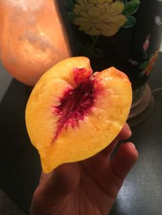 First Peach Picked from the new Peach tree Planted by a bird.. :))